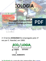 ECOLOGIA - 2013 6 ano.ppt