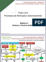 04_fase_livre_vabema.pdf