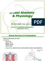 Notes Breast Anatomy and Physiology