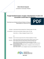 Fungal Biodeterioration of Paper (Sílvia Oliveira Sequeira)