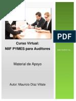 Norma Internacional de Información Financiera Niif Para Pymes - Introducción