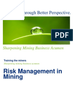 Risk Management in Mining