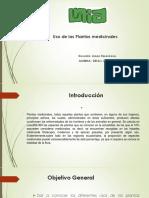 pplantas (1).pptx