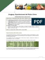 Boletín Exportaciones Del Rubro Ovino (Enero 2019)