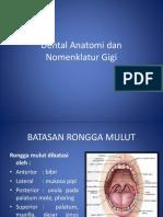 Dental Anatomi Dan Nomenklatur Gigi BA