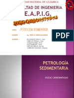 Capitulo v-rocas Carbonatadas