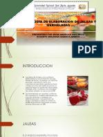 Tecnologia de Elaboracion de Jaleas y Mermeladas(Rosa)