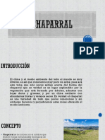 Chaparral Diapositivaas