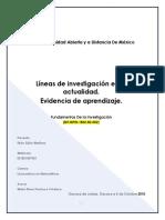 FI U1 EA EFGM Lineasdeinvestigacion