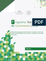 Protocolo Oaxaca