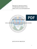 Proyecto Ex Ante Heladería Paletería s.a.