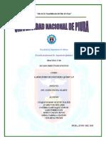 PRACTICA N°06-SECADO.docx