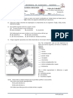 a-cc3a9lula-biomolc3a9culas-e-transporte_10.pdf
