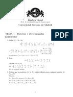 SolucionesTema1_MatricesDeterm