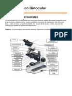 trabajo practico del microscopico.docx