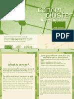 Cancer Cluster Bklt 2006-FL