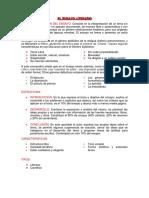 ENSAYO LITERARIO.pdf