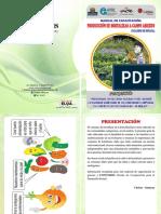 buen manual en produccion de hortalizas