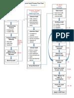 Revision 2 - Current Audit Process Flow Chart
