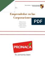 Emprendedor en Las Corporaciones