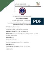 Informe Nº 2 Elaboración de Pan