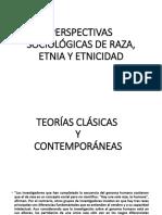 Perspectivas Sociológicas de Raza, Etnia y Etnicidad