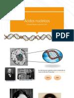 C3_Ácidos_nucleicos(1)