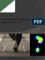 Flamingo test