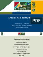 Gilberto Luiz Ensaios Não Destrutivos