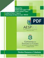 Apostila Pefoce 2015 - Direitos Humanos e Cidadania