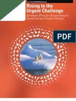 FWS Strategic Plan