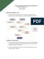 Analisis de Causas La Victoria.