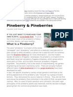 What Are Pineberries