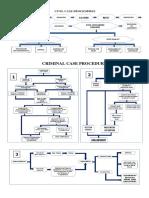 FINAL-COURT-PROCESSES.docx