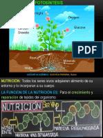 6.-FOTOSINTESIS-nuevo1 (2)