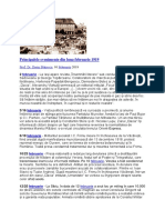Principalele evenimente din luna februarie 1919.docx