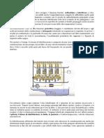 Circuito Di Lubrificazione Olio Motore