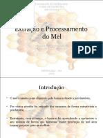 Extração e Processamento Do Mel