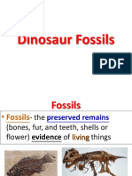 S.1 Info Day - How Dinosaur Fossil is Formed