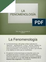 La Fenomenología en Psicoterapia