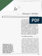 Ideologia e Alienção - Maria Lúcia