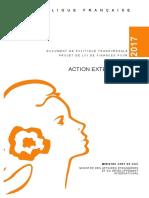 DPT2017_action_exterieure.pdf
