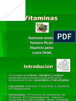 Vitaminas Nutriicion Animal