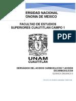 Resumen de Organica Derivados de ácidos carboxílicos