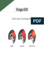 Etiologia ADHD