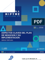 Aspectos Claves Para Un Plan de Negocio y Su Implementacion - Sergio Tertusio