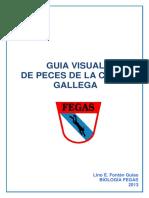 Guc3ada Visual Peces Galicia v9 Jul13