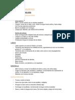 DESARROLLO_LINGUÍSTICO.docx