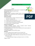 0_lectie_finala_matamatica.doc