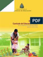 Curriculo_menor_de_4_anos.pdf